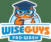 WiseGuys Pro-Wash, LLC